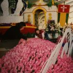 My Experience Decorating a Rose Parade Float